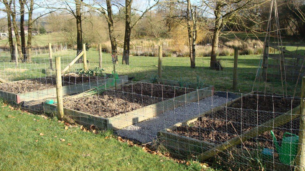 09-feb-our-garden-002