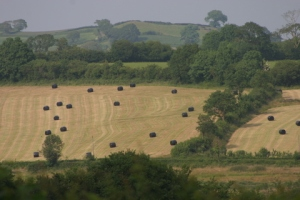 Looking across to our neighbour's fields where they have been haymaking