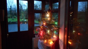 Christmas tree in porch