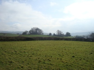 Looking towards the site of the remains of Llangadog motte and bailey castle