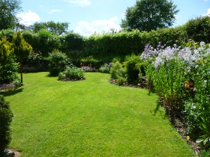 Lletty Cottage garden